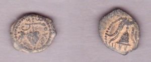 4bc-6ad coins honoring grapes
