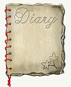 ibs-life-diary-300