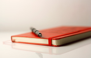 brainpickings-diary