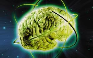 telegraph.co-brain-globe_3028263b